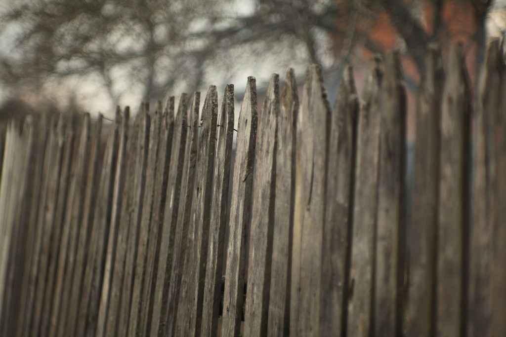 Современный забор для дачи