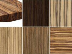 Межкомнатные двери цвета древесины Зебрано в интерьере: фото, цветовые сочетания