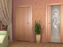Вставка стекла в дверь своими руками: порядок и особенности работы